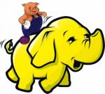 pig-on-elephant